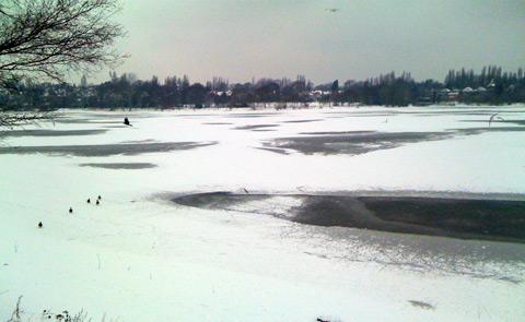 Edgbaston Reservoir in the Snow